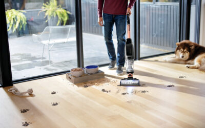 Bissell Introduces Cordless Wet Dry Vacuum